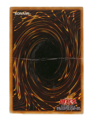 ランクD_遊戯王画像2